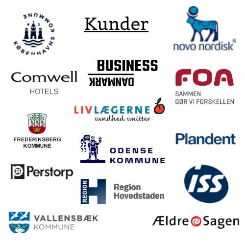 Stina Bavnhøj kunder virksomheder
