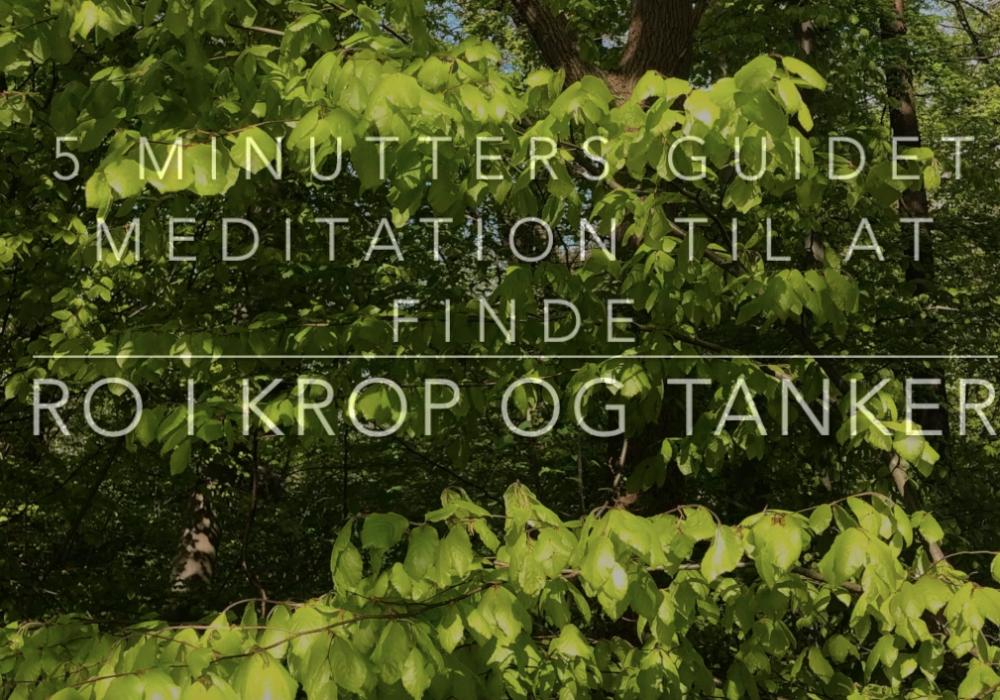 mindfulness meditation ro i krop og hoved